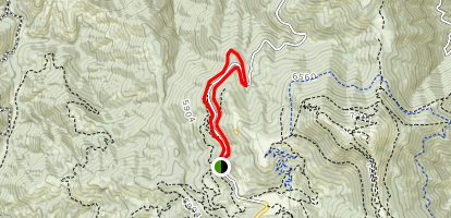 Sapper's Return to Weasel to Redtail Trail Loop Map