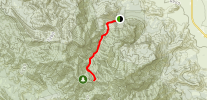 Ramsey Canyon and Hamburg Trail Map
