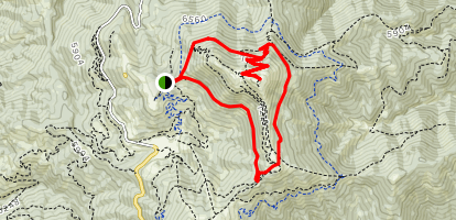 Shafer Butte Loop via Brewer's Byway and Lodge Cat Track Map