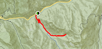 Mineral Fork to Silver Mountain Mine Trail Map