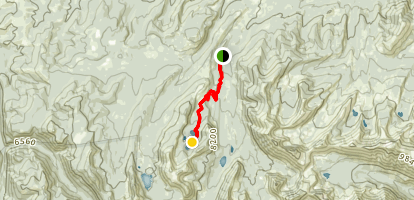 Four Mile Basin Map