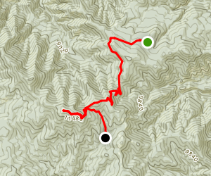 Whistle Punk Trail Camp to Mt. Phillips to Red Hills Trail Camp Map