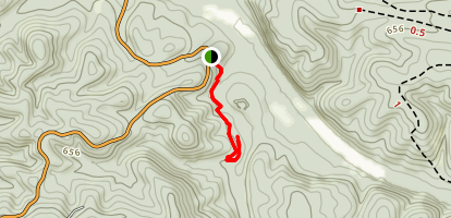 Tree Trail Map