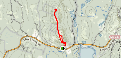 McFarland Mountain and Youngs Mountain Trail Map