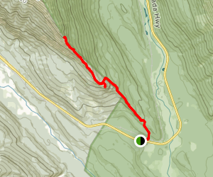 Mount Hunter Lookout Trail Map