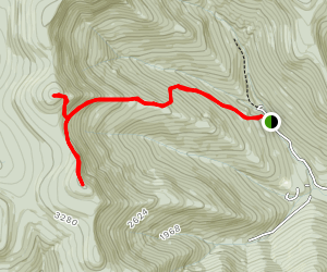 Friday Mountain and Balsam Cap from Moonhaw Rd Map