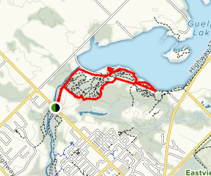 Guelph Lake MTB Loop- Grand Trunk, Jurrasic, Child's Play, Mad Hatter Map