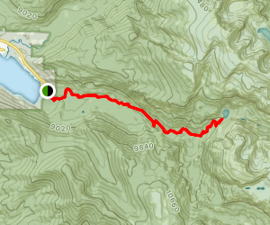 East Inlet Trail to Lone Pine Lake Map