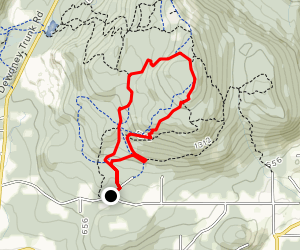 Bear Back and Lorax MTB Trail Map