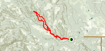 Braggin Rights and Merlin View Loop Map