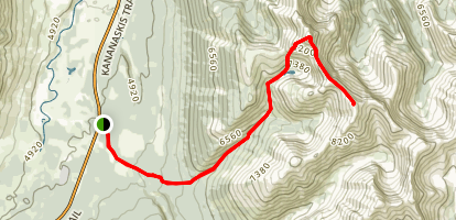 Mount McDougall via Old Baldy Trail Map