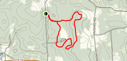 Stony Pond State Forest Loop Map