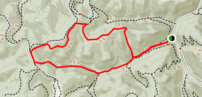 Polly Hollow, Hemlock Falls and Bob White Pathway  Map