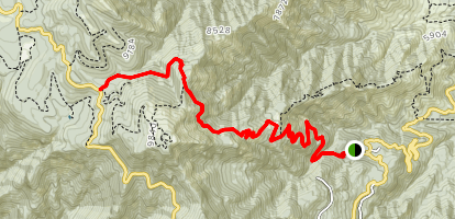 Arcadia Trail to West Swift Trail  Map