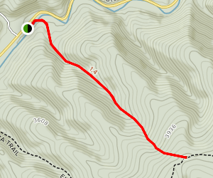 Bee Trail Map
