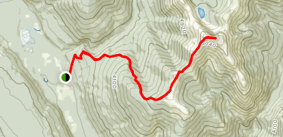 Kimta Creek Trail  Map