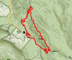 Border Track and Box Forest Circuit Loop Map