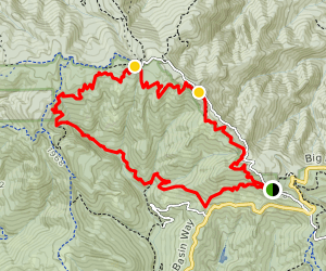 Hollow Tree Trail to Basin Trail Loop Map