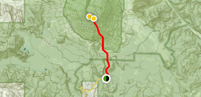 Mount Saint Helens via Worm Flows Trail Map