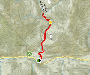Nellie Creek Falls Trail Map