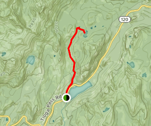 Murphy Creek Trail to Polly Dome Lake Map