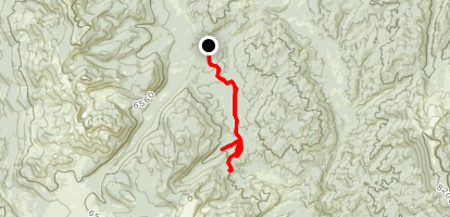 Ruby Meadows  Map