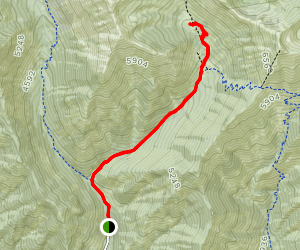 Bean Creek Basin Trail Map