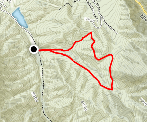 Left Hand Fork Trail Loop Map