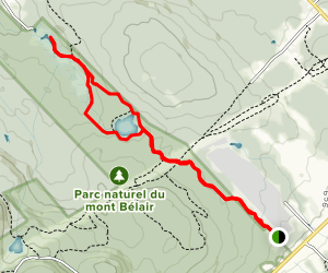 Belair Ourdoor Center Marsh Trail Map
