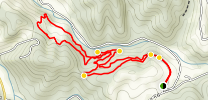 Matthews State Forest MTB Trail South Map