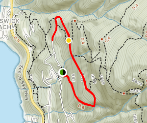 Trudi's Trail Map