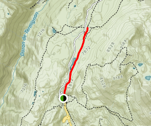Refuge Du Plan Du Lac from Bellecombe Map