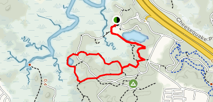 Yellow and Blue Loop Trail Map