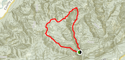 First Fork and Red Creek Loop Trail Map