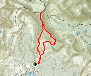 Scarp Ridge Trail to 421 Trail Loop Map