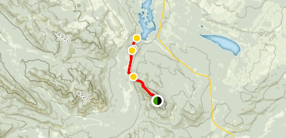 Athabasca Lookout Trail Map