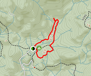 Chimney Trail and Bull Buck Loop Map