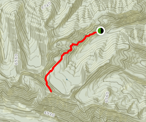 Moran Creek to Coal Ridge Lookout Map