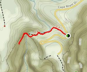 Cliff Springs Trail Map
