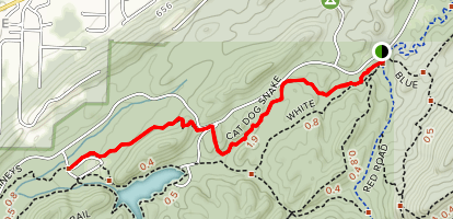 Cat Dog Snake (Red Trail) Map