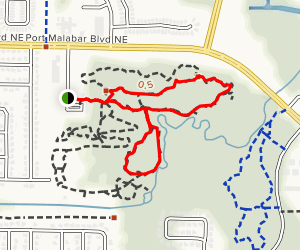 Sand Pine Ridge Trail to Hammock Loop Trail Map