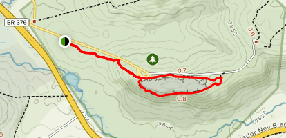 Arenitos and Bosque Trail Map