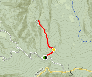 Kuntz Flat Trail  Map