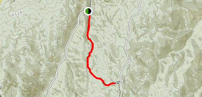 Forest Road 503 Map
