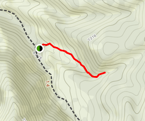 Ophir Canyon Campground Trail Map