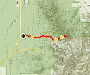 Organ Needle from Baylor Canyon Road Map