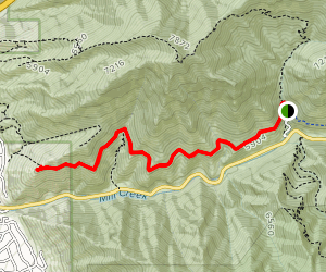 Church Creek to Pipeline Overlook Map