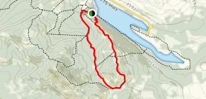 Piney Point Trail Map