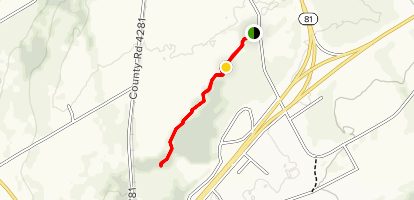 Wallace Park Nature Trail Map