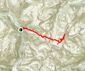 Handies Peak Alternative Route Map